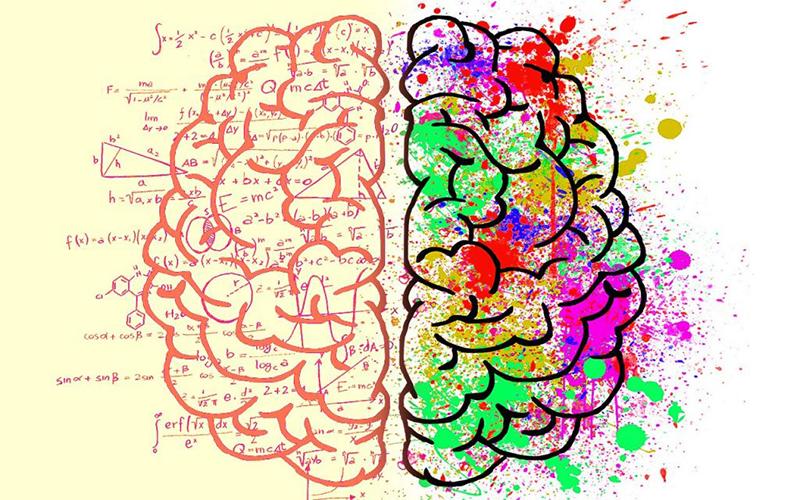 emdr-cervello-resize.jpg